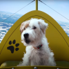 Microsoft Holiday Commercial Features Halo, Minecraft, And A Pile Of Puppers