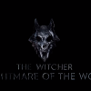 Netflix's The Witcher Anime 'Nightmare Of The Wolf' Logo Revealed With Short Video